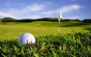 golf packages golf course at New Terry Hotel & Golf Resort